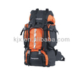 Designed Two-tone 600D School Backpacks