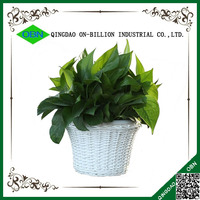 China hand woven bulk wicker basket for plants