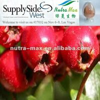 Natural Hawthorn berry P.E. Crataegus extract