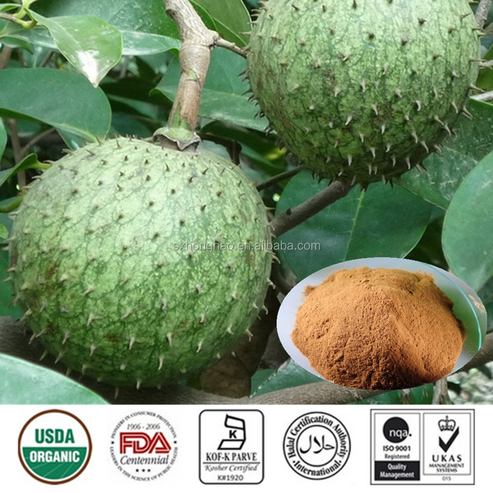 high quality free samples natural fruit extracts 4:1 10:1 20:1 graviola