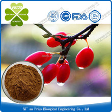 Asiatic Cornelian Cherry Fruit Extract Fructus Corni p.e.