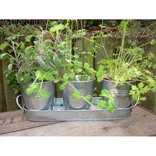 Wholesale custom decorative small silver galvanized plant pot with saucer