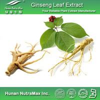 GMP Factory Red Ginseng Extract 30% Ginsenosides/Ginseng Capsules
