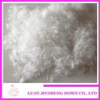 Feather Supplier 2-4cm~4-6cm washed white duck down feather