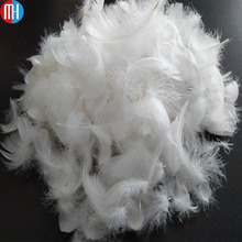 Class one and competitve price goose down feather for sofa/pillow/mattress/jacket