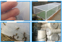 PE plant anti insect net