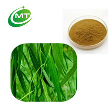 High quality pure natural 50%Salicin White Willow Bark Extract/Salix alba L.