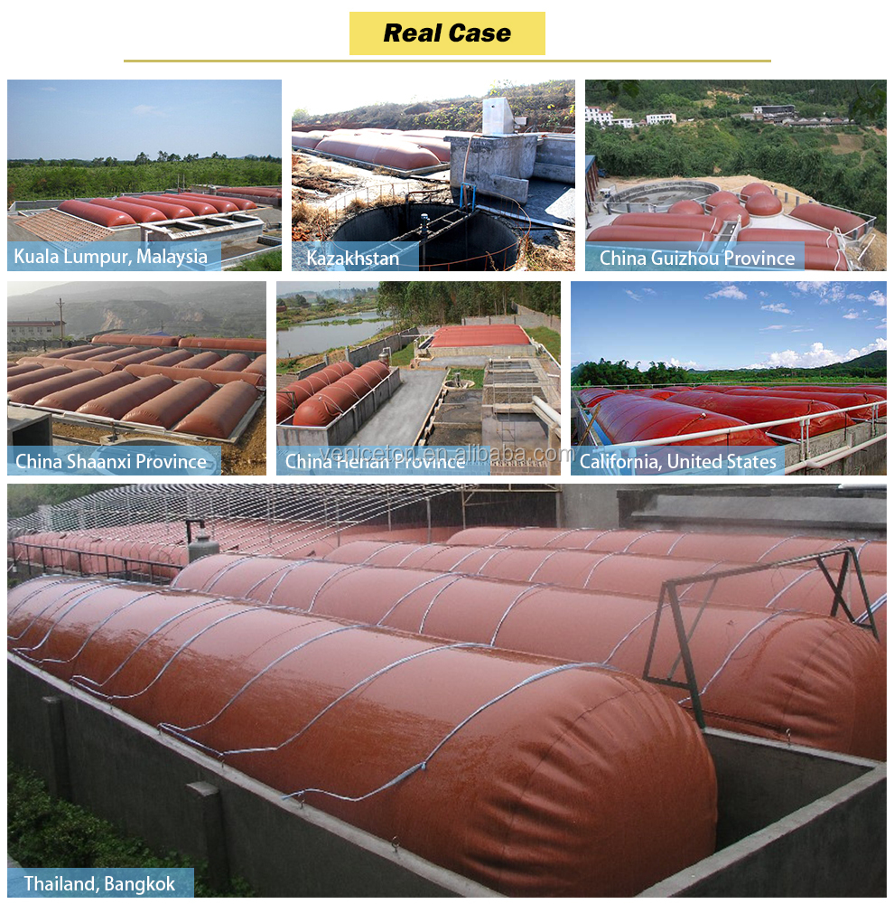 China Veniceton Low cost and big size biogas plant for electricity generation biogas plant digester