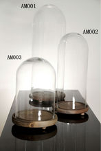 Clear Glass Bell Jars with Wooden Base Glass Dome