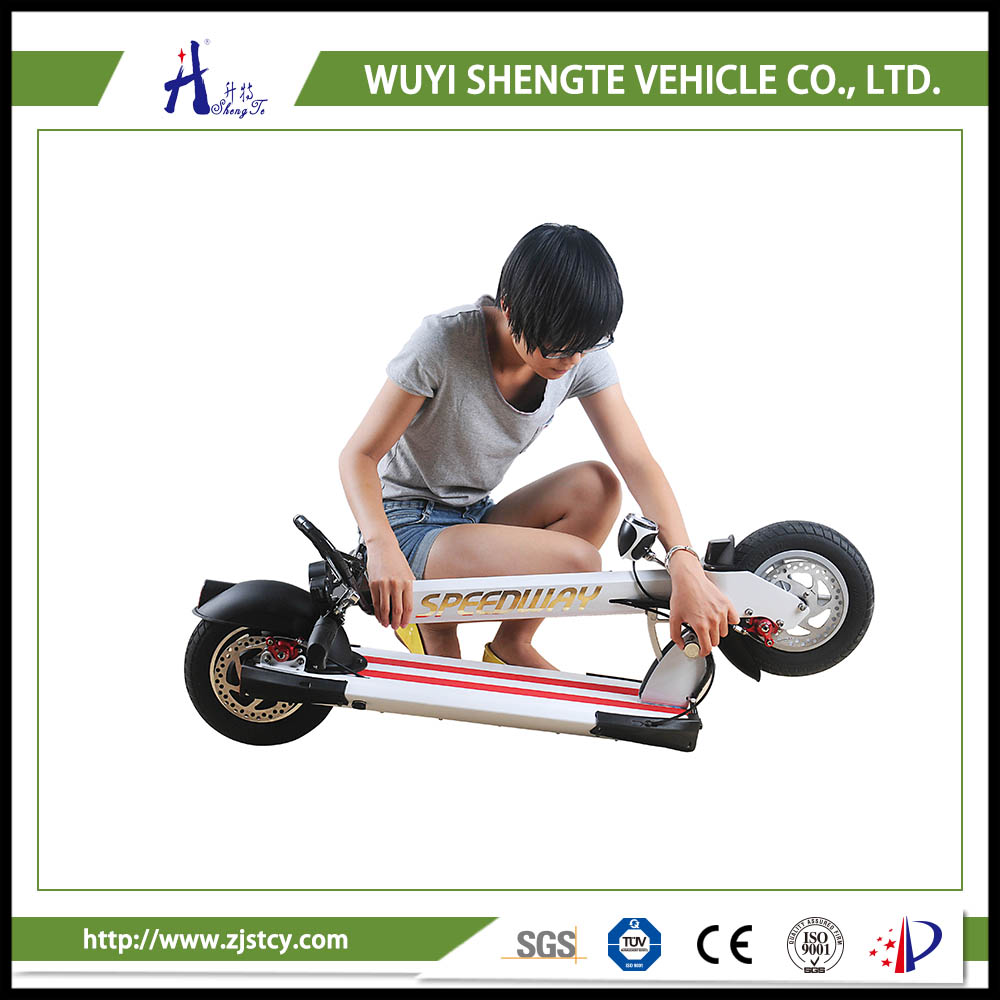 36v 10inch Self-Balancing Two-Wheel Electric Scooter