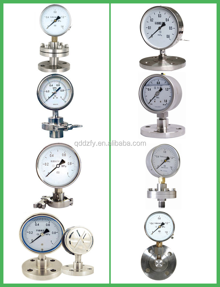 100mm Different Type Diaphragm seal Pressure Gauge