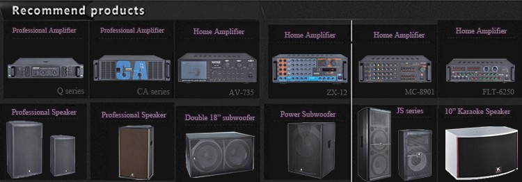 China Supplier Best Selling Products Electronic Amplifier Board 180W Power Amplifier