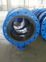 Blue Epoxy Coated Cast Iron Butterfly Valve From China
