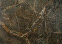 Low price natural stone rainforest green marble slab