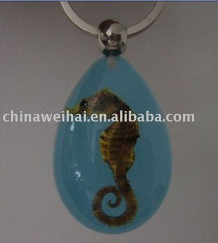key chain jewellry real insects resin