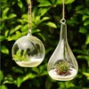 Clear hanging glass vase /terrarium/candle holder for decoration
