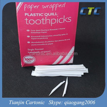 Wholesale Hollow Plastic Angled Toothpick