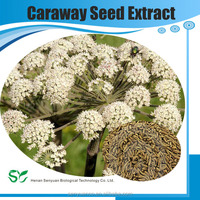 100% Natural Caraway Seed Extract, Carum Carvi Extract, Coriandrum Sativum Extract