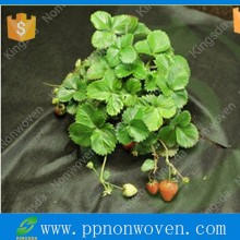 Agriculture Non Woven Fabric, TNT Nonwoven Raw Material for Fabric, Landscape Non-woven Fabric