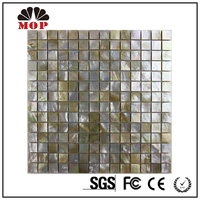 MOP G38 Shell With Ceramic Tile