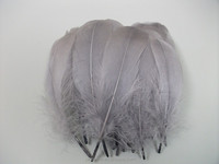 Fashion Cheap Dyed Grey Goose Feather For Fascinator/Hat Decorate