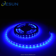 China professional manufacturer Blue color 12v DC smd5050 led flexible strip light for indoor decoration