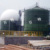 Double skinned biogas holder, biogas storage bag /balloon /roof /dome /tank /cabinet for biogas plant