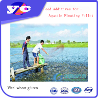 Floated Pellet Additive Wheat Gluten Meal Promote Fish Growth