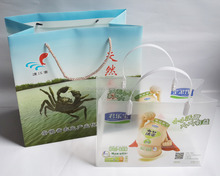 plastic promotional shopping gift rope handle pp bag