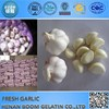 garlic for middle ease black garlic made in japan
