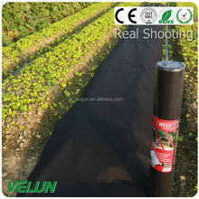high quality non-woven fabric agriculture nonwoven fabric for landscape