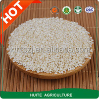 peeled white sesame seeds