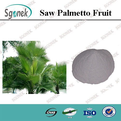 100% Natural Saw Palmetto Fruit Extract Powder