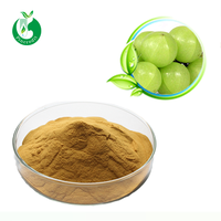 High Quality Phyllanthus Emblica Extract / Pure Natural Amla Fruit Extract