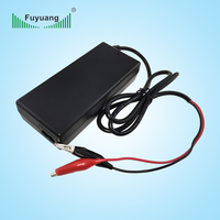 Fuyuang 16v 5a car battery charger for baby car