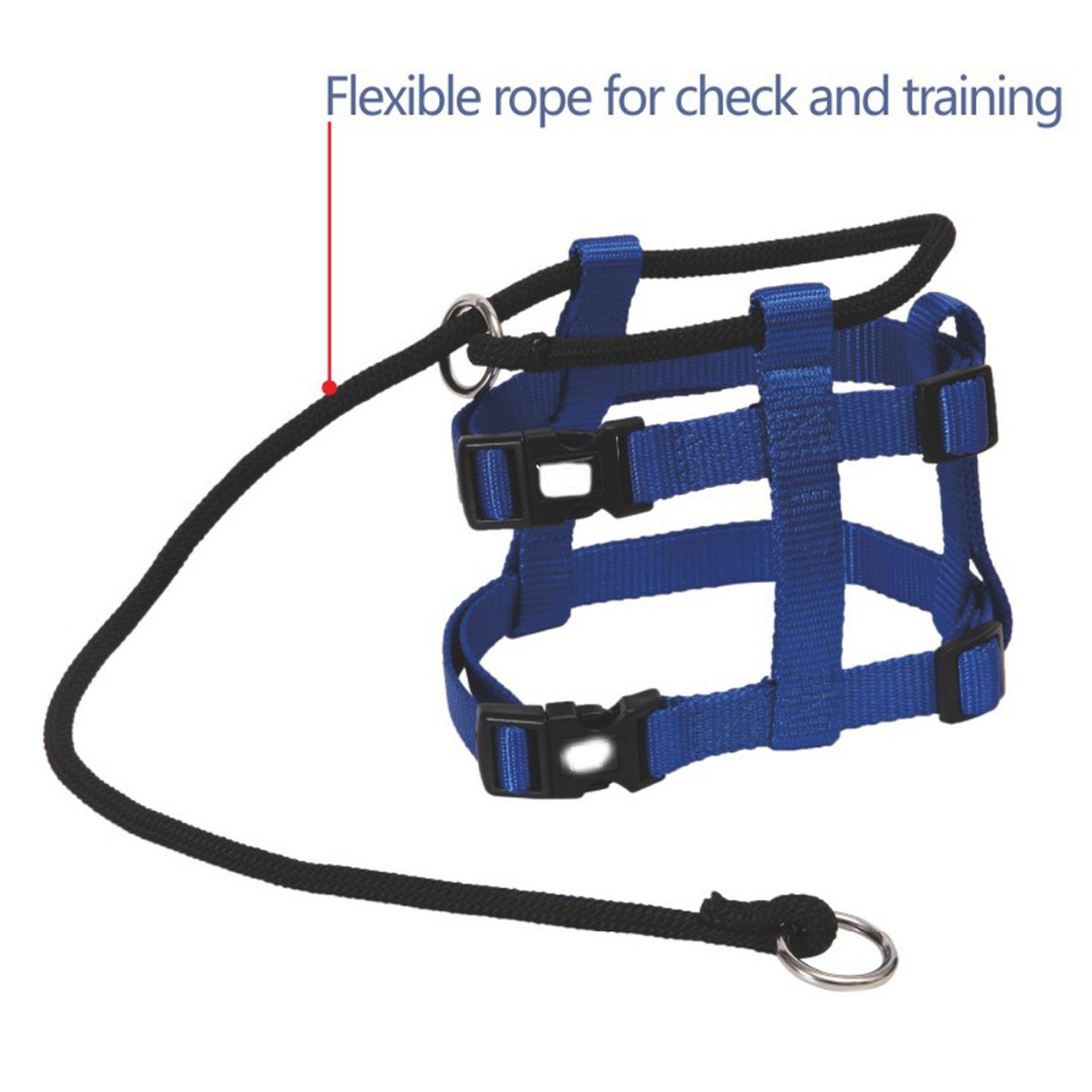Blue Color Nylon Amazon Hot Selling Service Dog Harness and Collar set with Two ABS Plastic Buckle