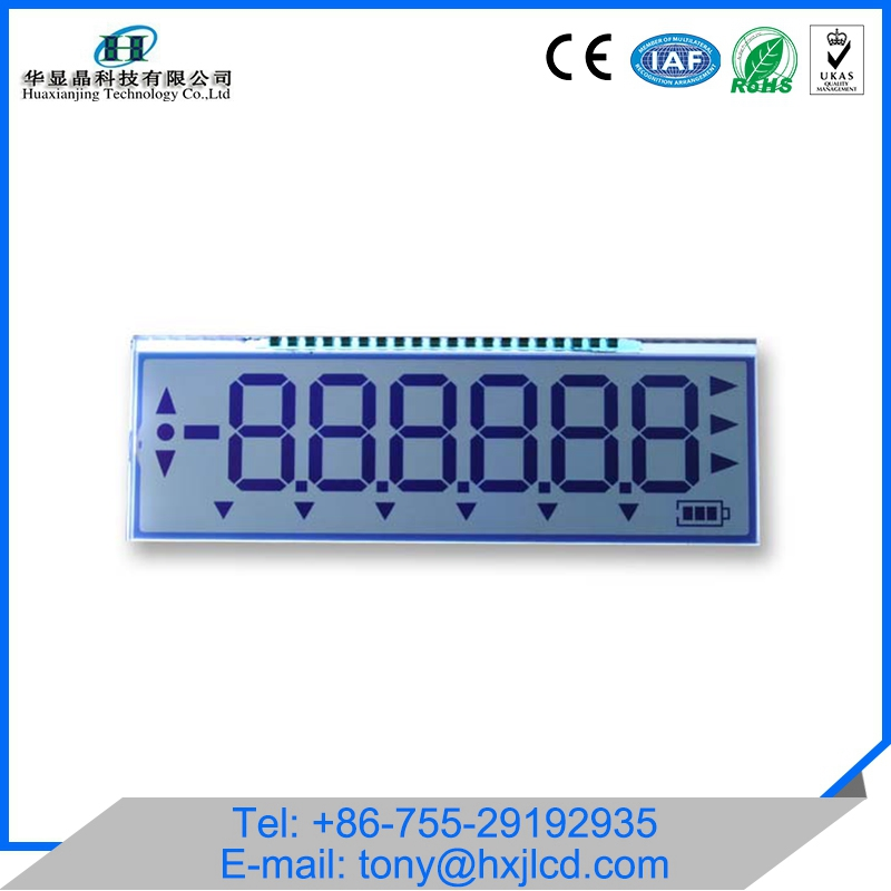 Custom monochrome segment 6-digit lcd display