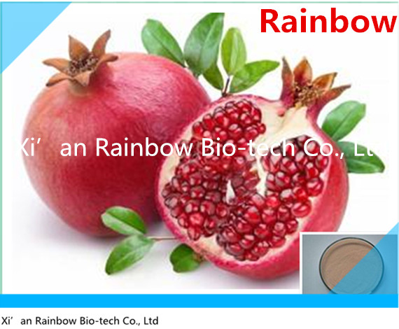 pomegranate bark extract powder Brand new high quality pomegranate plant extract / pomegranate shells polyphenols