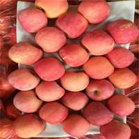 common cultivation chinese fresh fuji apples pome fruit