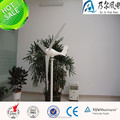100w wind turbine with factory price AC synchronous generator