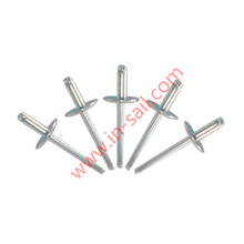 Hot sale China supplier OEM service DIN standard aluminum blind rivet manufacturer