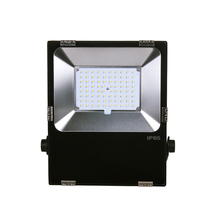 Waterproof IP66 outdoor 50w LED flood light for soccer stadium with ce listed