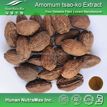 Pure Amomum tsao-ko Fruit Extract Powder 5:1 10:1