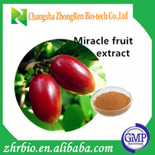For Diabetes Mellitus Miracle Berry Extract, Miraclefruit Extract Powder