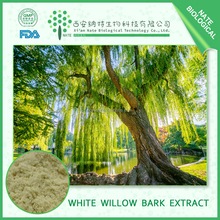 Natrual Hot Sales white willow bark extract 50% can relieving arthritis pain
