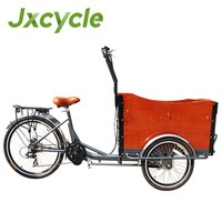 new electric cargo tricycle