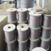 304 7x7 0.3mm stainless steel wire rope