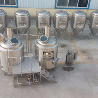 Longer Service Small Brewery System 300l