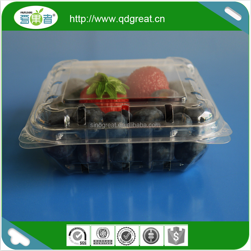 plastic blister fruit/cherry/blueberry packing container/box