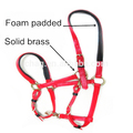 Pvc Horse Halter With Copper Hardware And Soft Padded